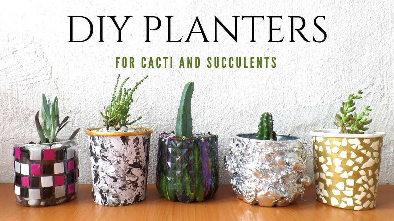 Cactus Planting Pots Five Planter Plant Pot Ideas Using Recycled Materials Planters For Cacti And Succulents