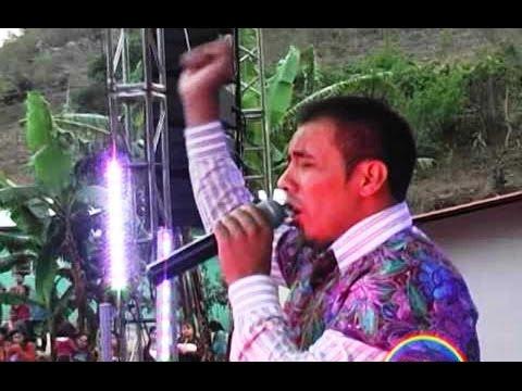 Mario Victor Completo, Nuevo, Hd