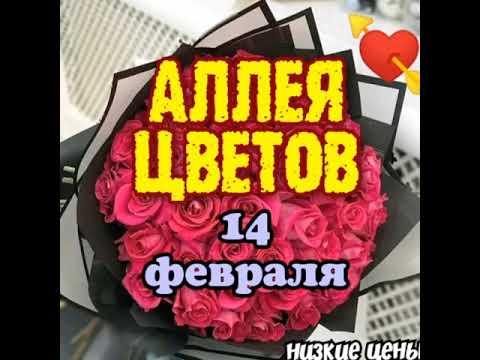 Подарки для девушек на 14 февраля Тюмень. Букеты цветов по акции и распродаже влюбленным как подарок