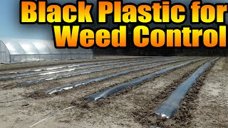 Black Plastic for Weed Control