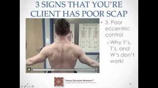 THE BEST SCAPULAR STABILIZATION EXERCISE WITH DR. EVAN OSAR