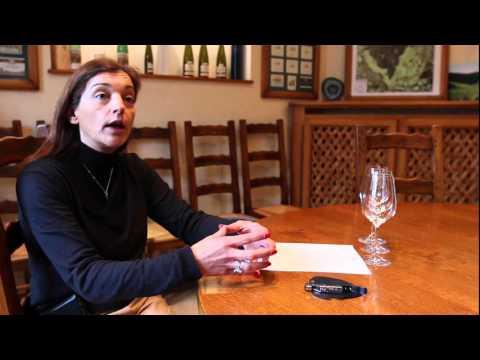 Séverine Schlumberger talks