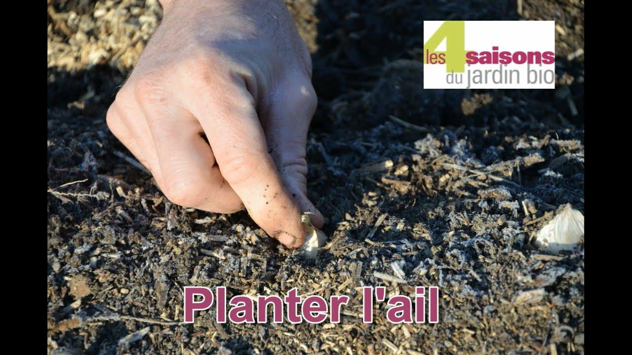 Les 4 Saisons du jardin bio - Planter l'ail - YouTube