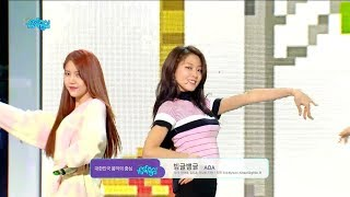 【TVPP】 AOA – Bingle Bangle, 에이오에이 – 빙글뱅글 @Show Music Core