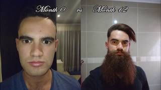 Yeard Time lapse: 365 Days of Growing a Beard