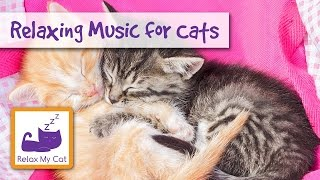 Music to Help Your Cat Relax and go to Sleep