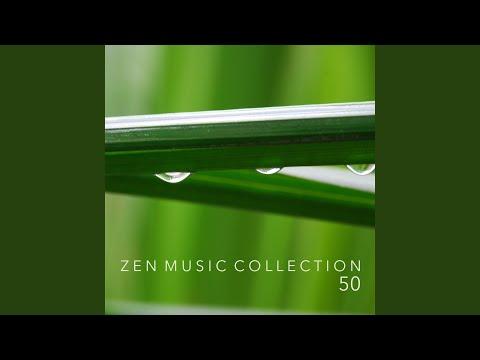 Popular Videos - Music for Deep Relaxation Meditation Academy & Sleep
