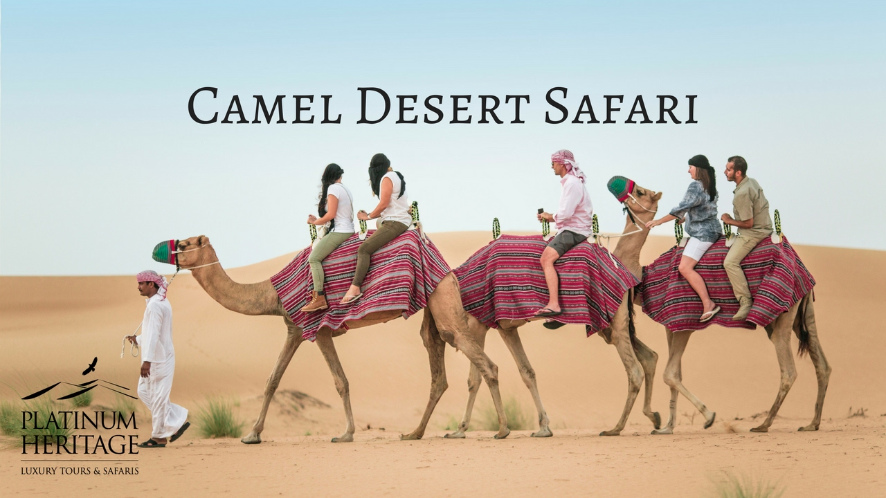 Camel desert safari dubai youtube camel desert safari dubai thecheapjerseys Choice Image