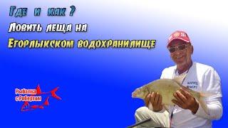 Ловля леща на Егорлыкском водохранилище.