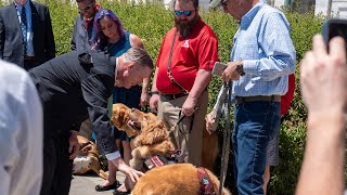 Rep. Stivers, veterans celebrate advancement of PAWS Act