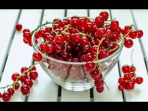 Рецепт морса из ягод в Мультиварке🍹 Правильное Питание💪