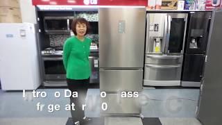 Daewoo Klasse Kimchi Refrigerator 330L Review