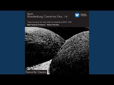 Brandenburg Concerto No. 2 in F BWV1047 (1988 Remastered Version) : II. Andante