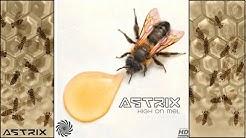 Astrix - Liquid Gold