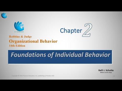 Foundations Of Individual Behavior Organizational Behavior