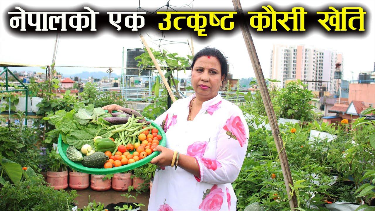नेपालको एक उत्कृष्ट कौसी खेति ! किसानको शिरमा ताज ! - Roof top vegetable farming in Nepal