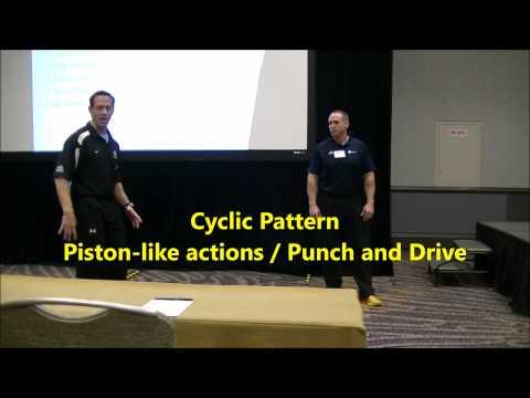 Loren Landow 2014 MLB Winter Meetings Presentation: Skips for Speed Development