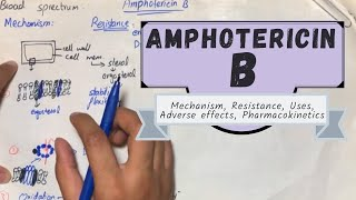 AMPHOTERICIN B - Mechanism, Resistance, Uses, Adverse effects, Pharmacokinetics.(Urdu/Hindi)