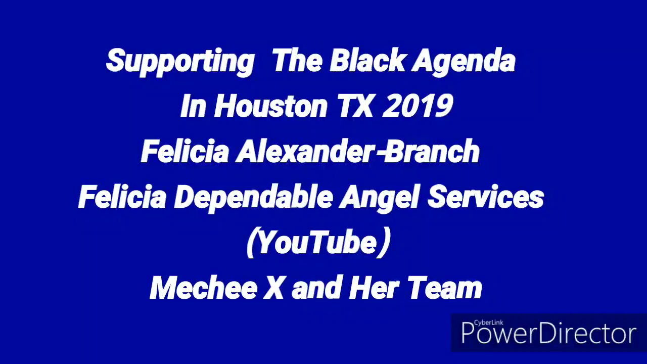 The Black Agenda Houston TX 2019 with Mechee X and her Team