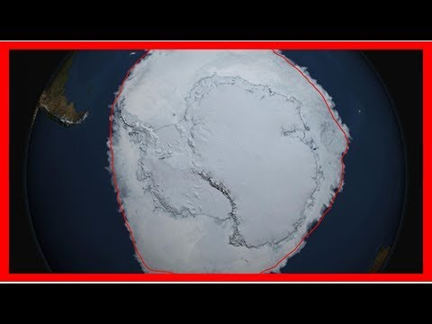 What's going on with antarctic sea ice?