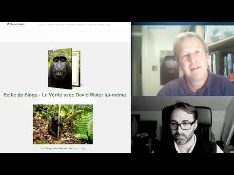 Selfie de Singe - La vérité avec David Slater lui-même