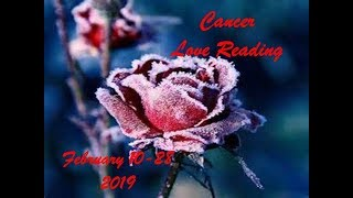 Cancer  February 10-28 Love Reading 2019 - FIFTY SHADES OF GREAT!