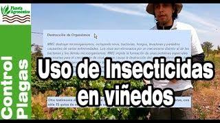 Viñedos, uso de insecticidas y manejo integrado de plagas y enfermedades
