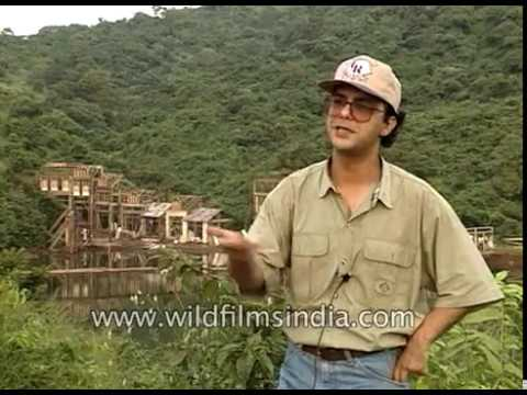 Vidhu Vinod Chopra on the sets of Hindi film '1942: A Love Story' Mp3