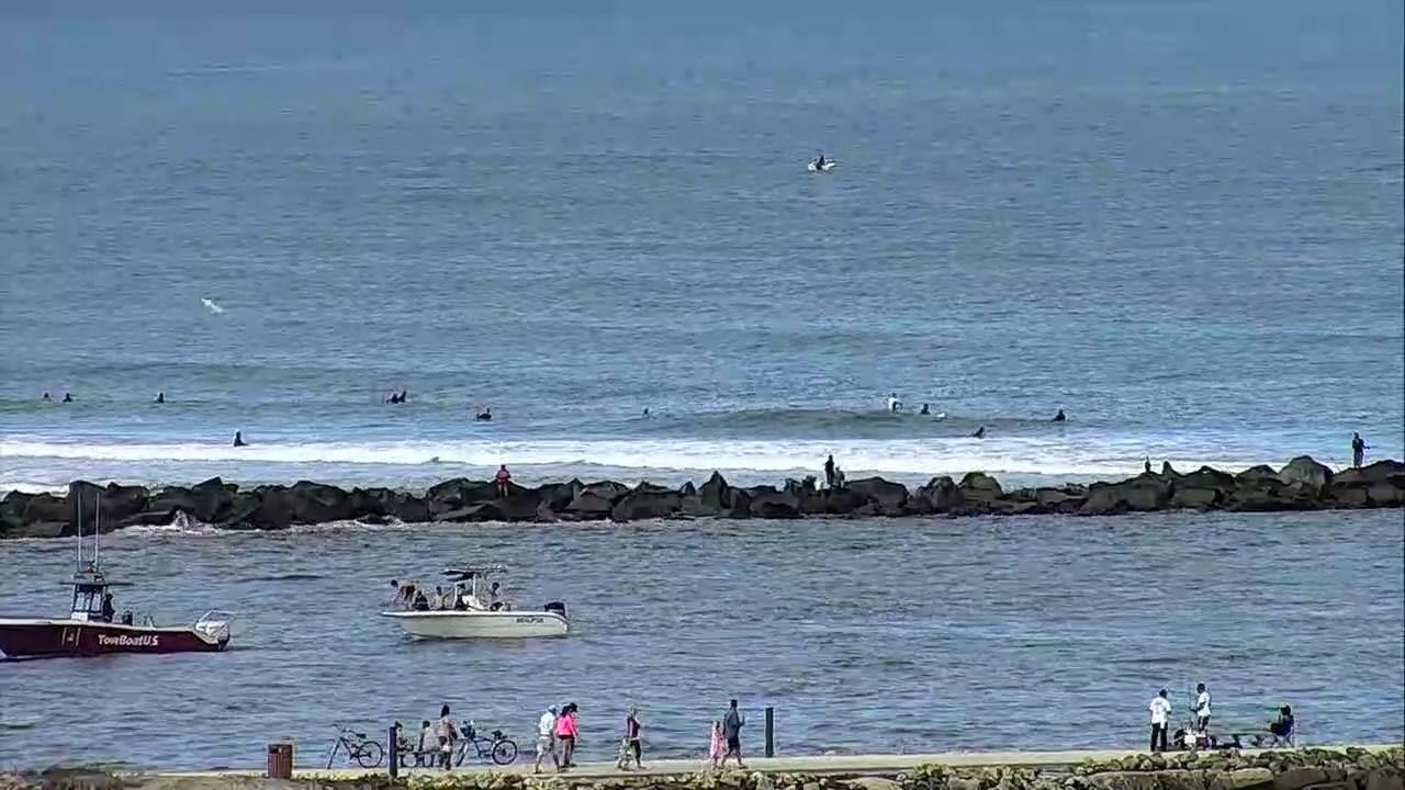 live surfline florida cam captures spinner sharks youtube