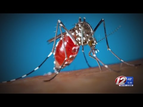 Health department confirms first Zika case in Rhode Island