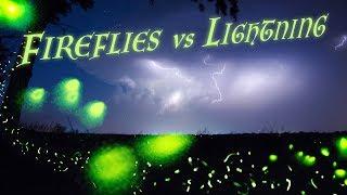 FIREFLIES vs LIGHTNING - A Magical Evening