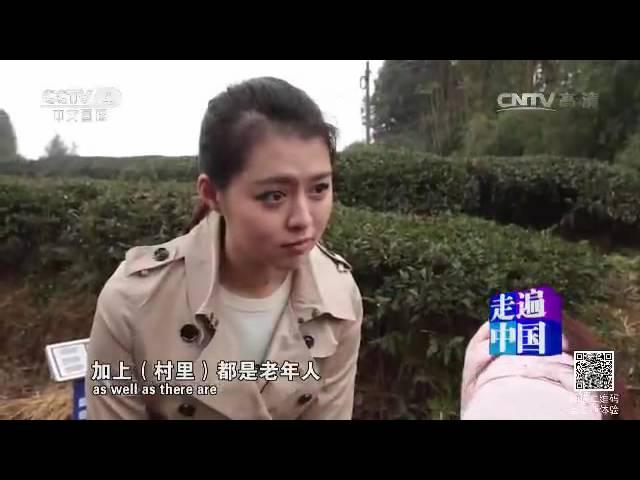 秸秆房不只是梦  【走遍中国  20160609】