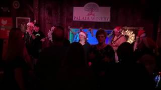 Take On Me - Say 80thing @ Palaia Winery 12/7/19