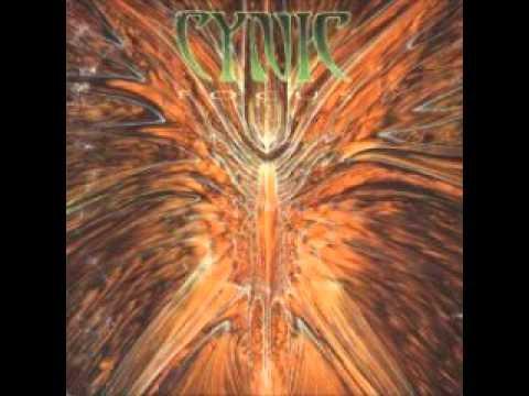Cynic  The Eagle Nature