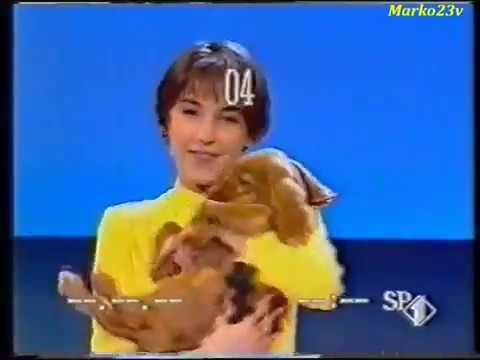 Francesca Gollini   Amico
