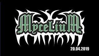 Мицелий концерт 20.04.2019