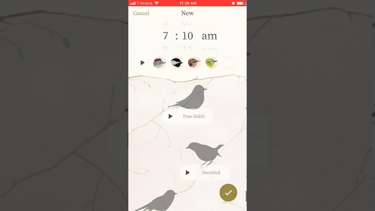 In Search of the Best Alarm App - Ema Kaminsky - Medium