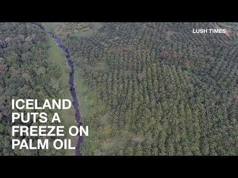 Iceland Freezes Out Palm Oil | News In Brief | Lush Times