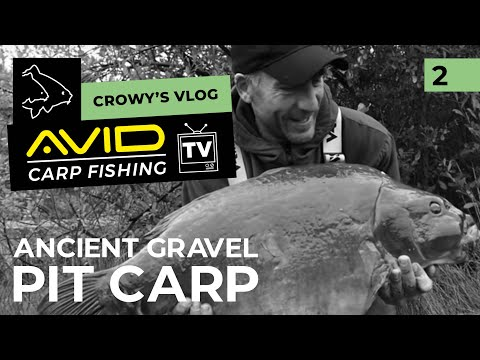 Avid Carp Fishing TV! | Crowy's Vlog! | 002 | Ancient Gravel Pit Carp!