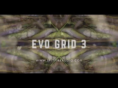 In Action: Evo Grid 3