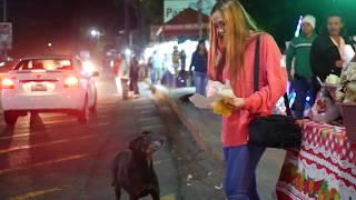 Travel vlog: Los Planes de Renderos (EL SALVADOR)