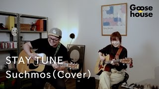 STAY TUNE/Suchmos (Cover)