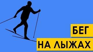 Техника классического бега на лыжах за 1,5 минуты