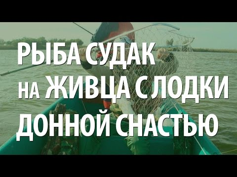 как сделать донку на судака для ловли с лодки