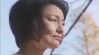 (ニコニコ動画より転載) 静岡県で2007年に放送されていた、パチンコ店...