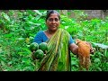 Chicken Papaya Recipe: Village Cooking Recipe by Village Food Life