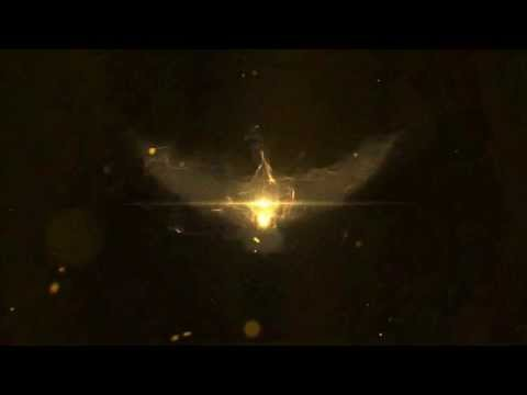 Phoenix Reveal After Effects Project Files  VideoHive