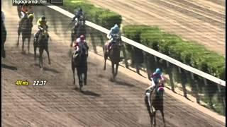 Vidéo de la course PMU PREMIO MASTODONTE