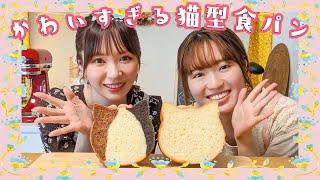 【猫好きにはたまらない...♡】みきぽんさんとキュートすぎる猫型食パン作り!