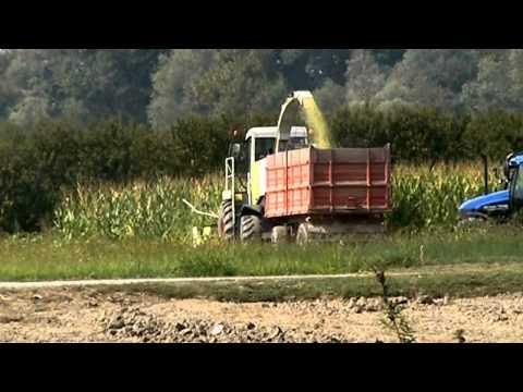 Kit rimorchio agricolo doovi for Selvatico rimorchi agricoli